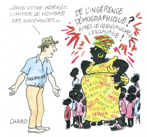 chard-africains.jpg