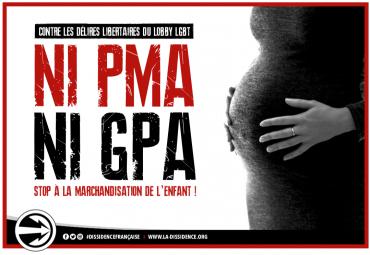 ni-pma-ni-gpa-df-2019.png