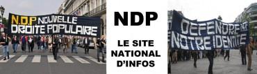 ndpinfo.jpg