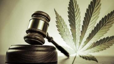 legalisation-cannabis.jpg