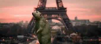 Paris-Rats.jpg