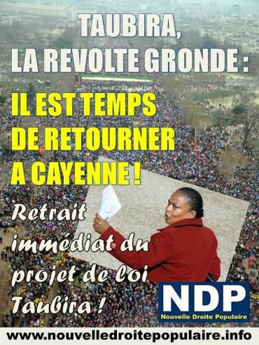 NDP Taubira 2013.jpg